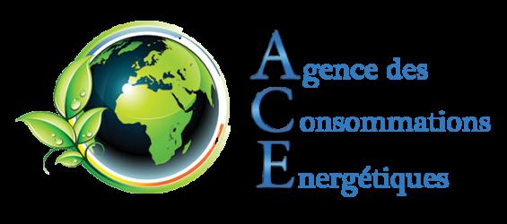 logo-ace-environnement