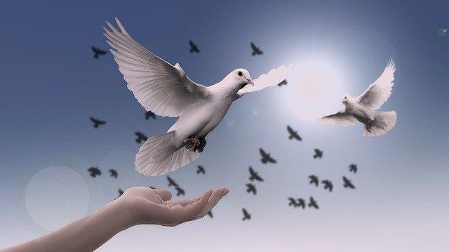 Comment construire la paix dans le monde ?