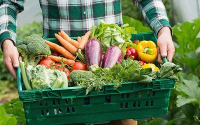 La vente des paniers de légumes est de retour